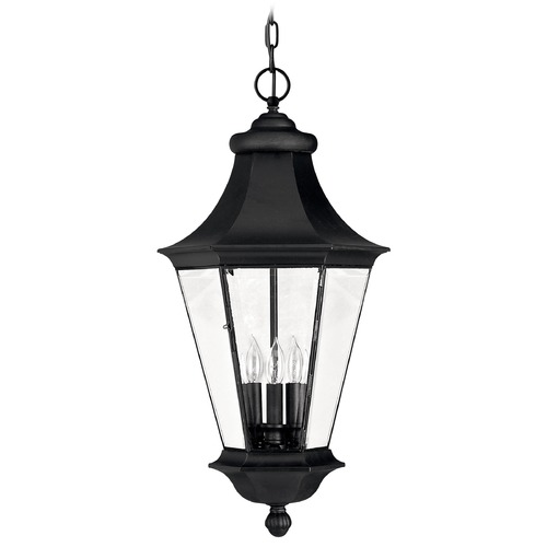 Hinkley Lighting Outdoor Hanging Light with Clear Glass in Black Finish 2502BK