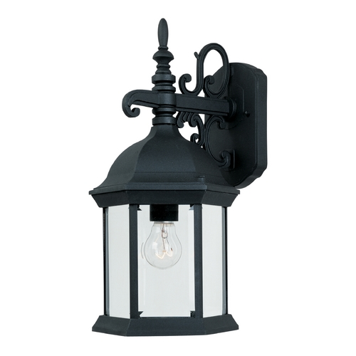 Designers Fountain Lighting Outdoor Wall Light with Clear Glass in Black Finish 2971-BK