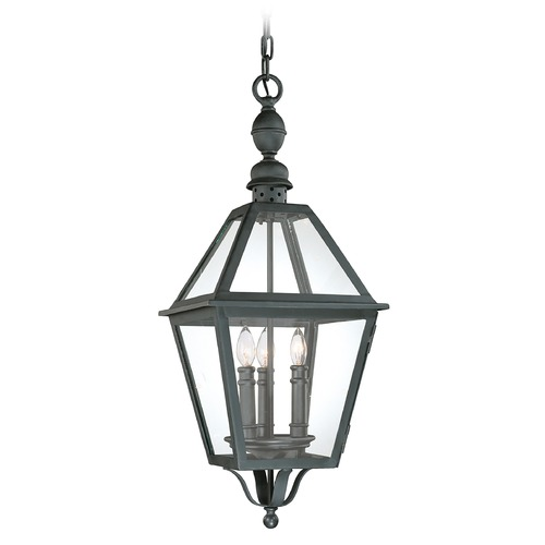 Troy Lighting Outdoor Hanging Light with Clear Glass in Natural Bronze Finish F9627NB
