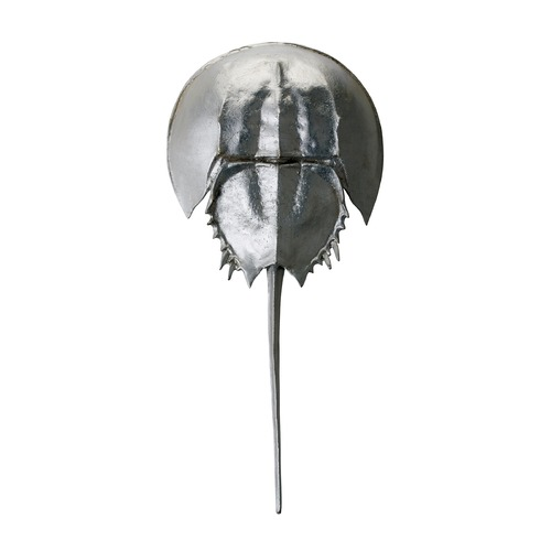 Dimond Home Silver Mica Horseshoe Crab 228005