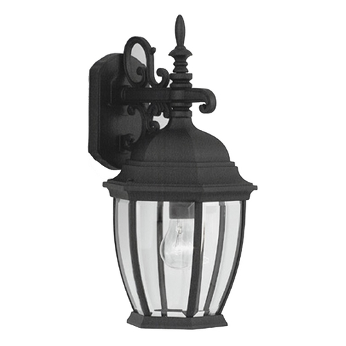Designers Fountain Lighting Outdoor Wall Light with Clear Glass in Black Finish 2431-BK