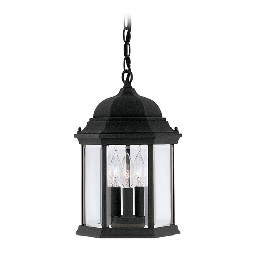 Designers Fountain Lighting Outdoor Hanging Light with Clear Glass in Black Finish 2984-BK