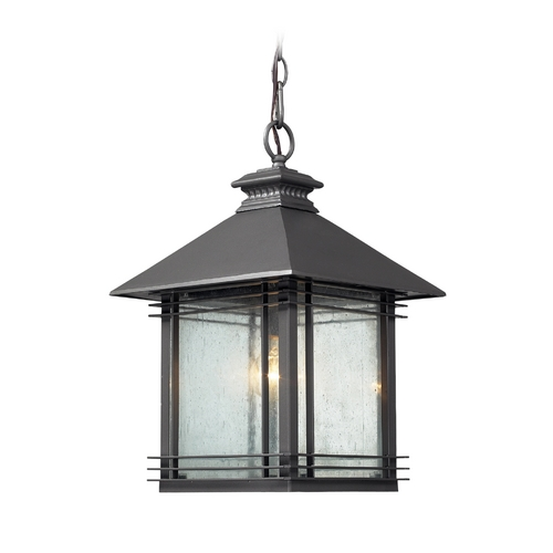 Elk Lighting Outdoor Hanging Light with Clear Glass in Graphite Finish 42303/1