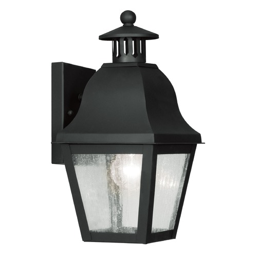 Livex Lighting Seeded Glass Outdoor Wall Light Black Livex Lighting 2550-04