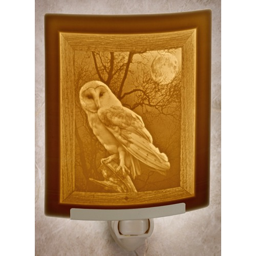 Porcelain Garden Lighting Porcelain Garden Lighting Owl Night Light NR270