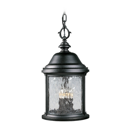 Progress Lighting Progress Outdoor Hanging Light with Clear Glass in Black Finish P5550-31