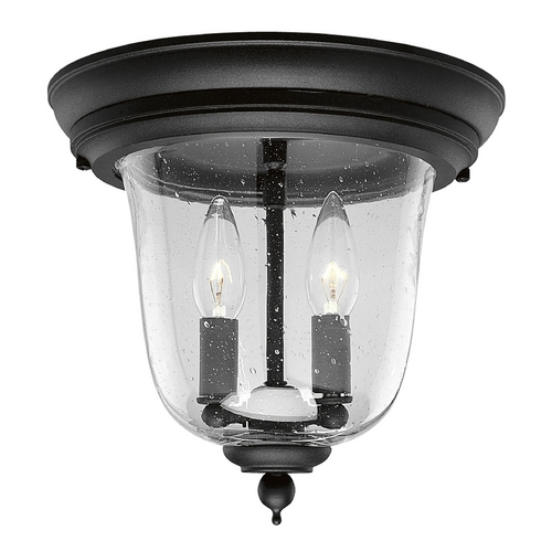 Progress Lighting Progress Outdoor Ceiling Light with Clear Glass in Black Finish P5562-31