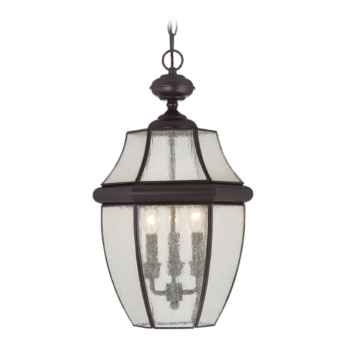 Quoizel Lighting Beveled Seeded Glass Outdoor Hanging Light Bronze Quoizel Lighting NY1912Z