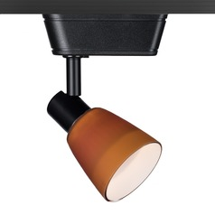 WAC Lighting Black Track Light with Amber Shade H-Track 3000K 450LM