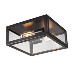 Flushmount Light with Clear Glass in Bronze Finish