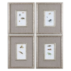 Uttermost Insect Study Framed Art, Set of 4