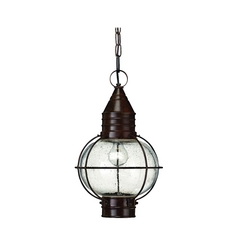 Outdoor Hanging Light with Clear Glass in Sienna Bronze Finish