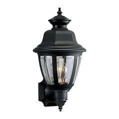 Progress Outdoor Wall Light with Clear in Black Finish