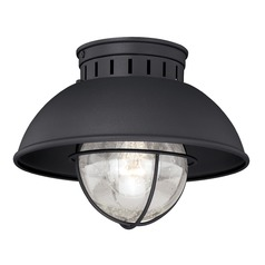 Seeded Glass Outdoor Ceiling Light Black Vaxcel Lighting
