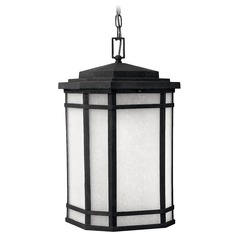 Outdoor Hanging Light with White Glass in Vintage Black Finish
