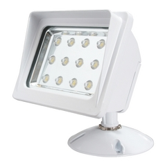 American Lighting Wall Pack White LED Flood - Spot Light