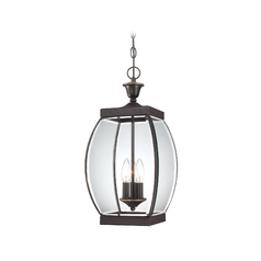 Outdoor Hanging Light with Clear Glass in Medici Bronze Finish