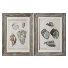 Uttermost Vintage Shell Study Framed Art, Set of 2