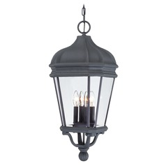 Outdoor Hanging Light with Clear Glass in Black Finish