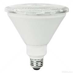 TCP LED PAR38 Light Bulb