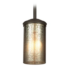 Sea Gull Lighting Sfera Autumn Bronze Mini-Pendant Light with Cylindrical Shade
