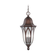 Outdoor Hanging Light with Clear Glass in Burnished Antique Copper Finish