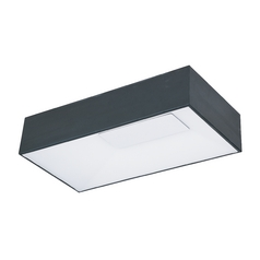 Modern LED Flushmount Light in Black Finish