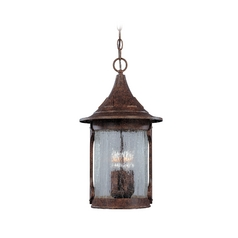 Outdoor Hanging Light with Clear Glass in Chestnut Finish