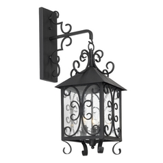 Outdoor Wall Light with Clear Glass in Espresso Finish