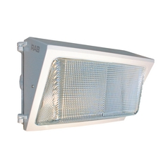Security Light in White Finish