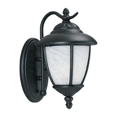Outdoor Wall Light with White Glass in Forged Iron Finish