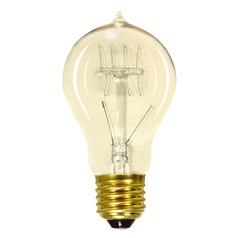 Carbon Filament Light Bulb - 40-Watts