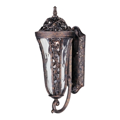 Outdoor Wall Light with Clear Glass in Tortoise Finish