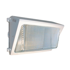 Security Light in White Finish - 32W