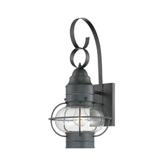 Outdoor Wall Light with Clear Cage Shade in Mystic Black Finish