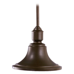 Quorum Lighting Oiled Bronze Outdoor Hanging Light