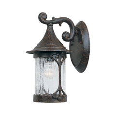Outdoor Wall Light with Clear Glass in Chestnut Finish