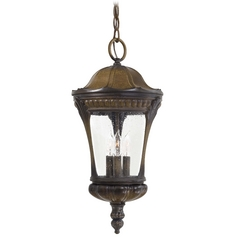 Outdoor Hanging Light with Clear Glass in Prussian Gold Finish