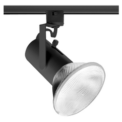 Track Light Head in Black Finish