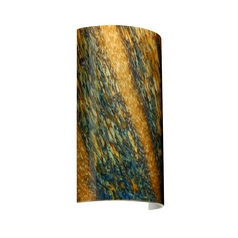 Modern Sconce Wall Light Multi-Color Glass Bronze by Besa Lighting