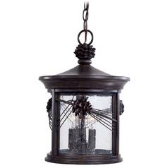 Outdoor Hanging Light with Clear Glass in Iron Oxide Finish