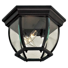 Close To Ceiling Light with Clear Glass in Black Finish
