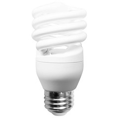 13-Watt Compact Fluorescent Light Bulb (2700K) - 60-Watt Equivalent