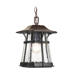 Outdoor Hanging Light with Clear Glass in Espresso Finish