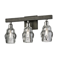 Troy Lighting Citizen Graphite / Polished Nickel Bathroom Light