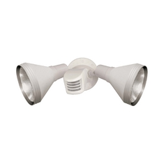 Motion Sensor Flood Light in White Finish