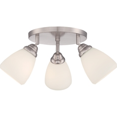 Quoizel Brushed Nickel Directional Spot Light