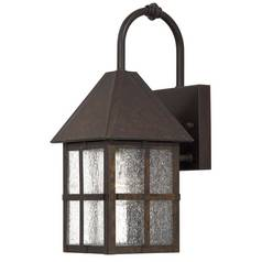 Outdoor Wall Light with Clear Glass in Rust Finish
