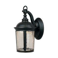 LED Outdoor Wall Light with Clear Glass in Aged Bronze Patina Finish