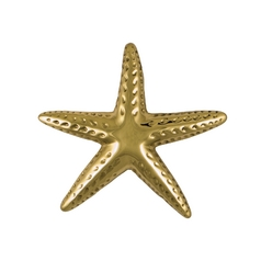 Starfish Door Knocker in Brass Finish